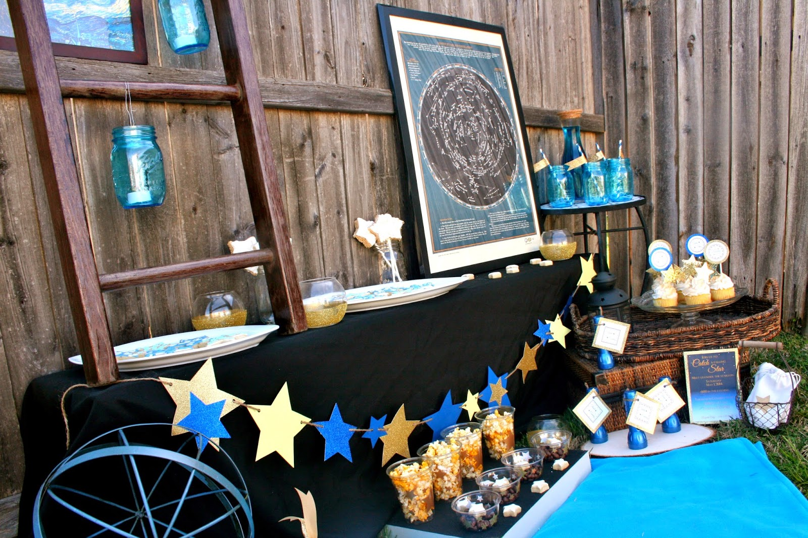 Catch a Falling Star Watching Party - Verified Mom